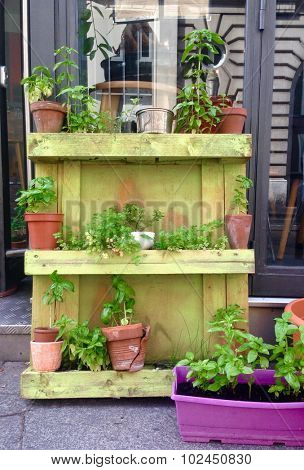 Pots and plants place on wooden palet serving as outdoor shelf in front of shop in Paris