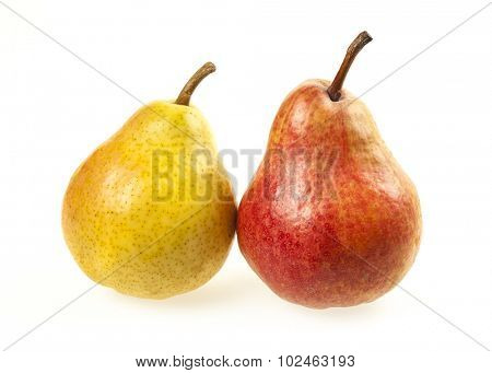 Two ripe pears, yellow and red, isolated on white background