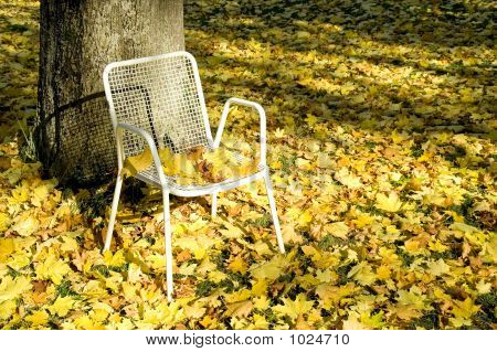 Deserted Chair 07