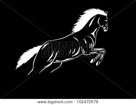 Black-white Jumping Horse Mustang