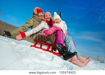 Ecstatic family on sledge having fun in winter