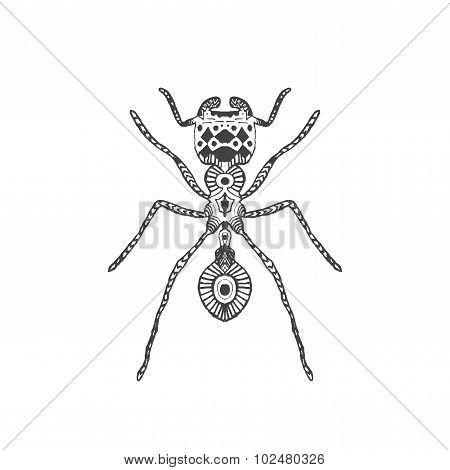 Zentangle stylized ant