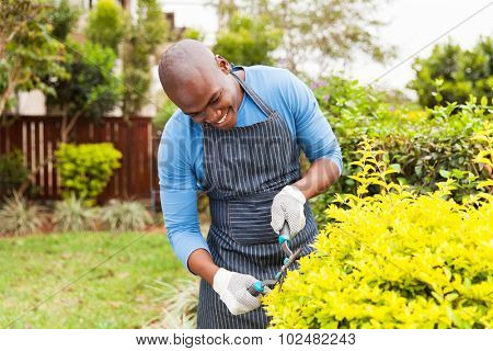 happy african american man trimming plants at home garden