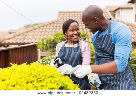 lovely young african american couple gardening together at home