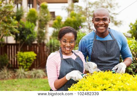 portrait of happy afro american couple working in home garden