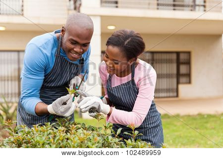 beautiful african couple gardening at home