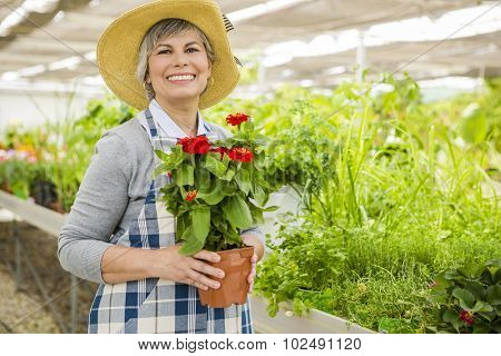 Mature woman in a greenhouse holding flowers