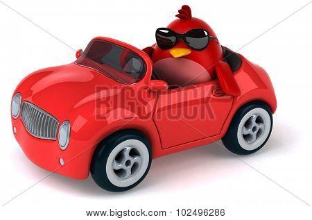 Fun red bird