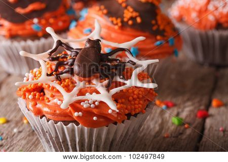 Halloween Cupcakes With Chocolate Spider Close-up. Horizontal