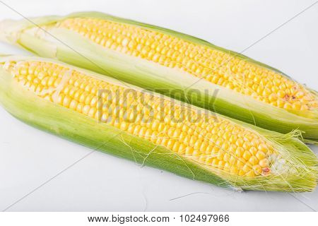 Two Cob Of Corn  Isolated On White Background