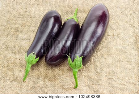 Three Eggplant On A Sackcloth