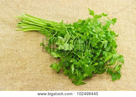 Bunch Of Parsley On A Sackcloth