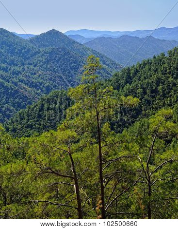 View of the Troodos Mountains