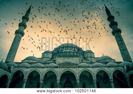 Blue Mosque against dramatic sky with birds and clouds, Istanbul, Turkey