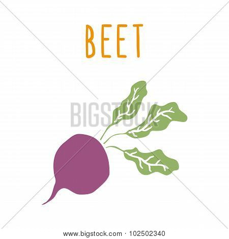 Beet root isolated on white.