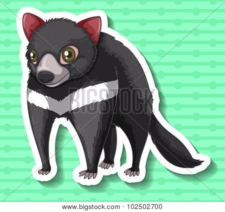 Tasmanian Devil standing alone illustration