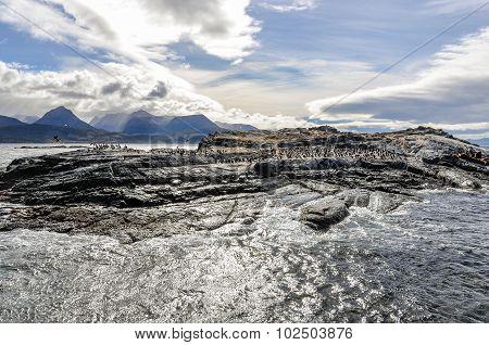 Beagle Channel, Ushuaia, Argentina