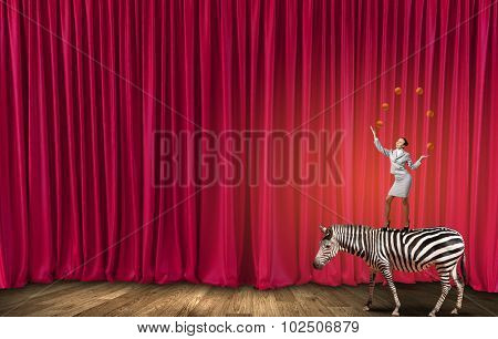 Young businesswoman standing on zebra and juggling with balls