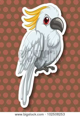 White macaw with red eyes illustration