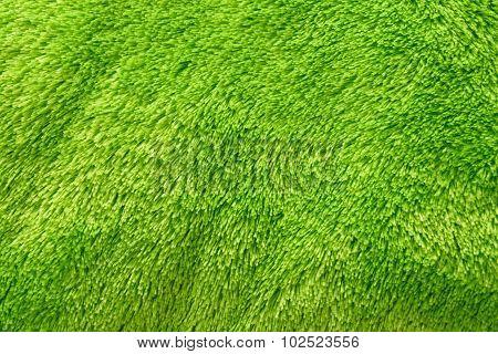 Green Carpet Floor Texture