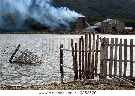 Lake And Sawmill