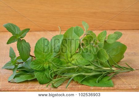 Fresh Aromatic Plants