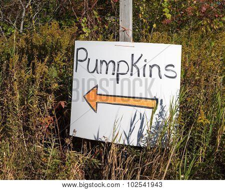 Pumpkin Patch Sign With Orange Arrow