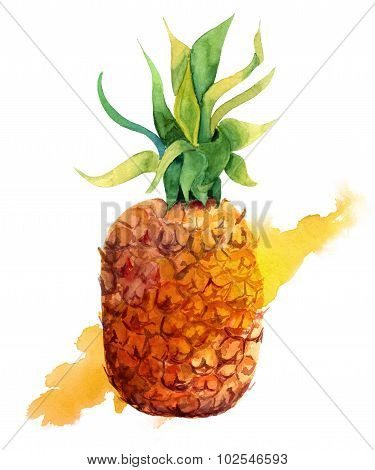 Watercolour pineapple with a splash on white background
