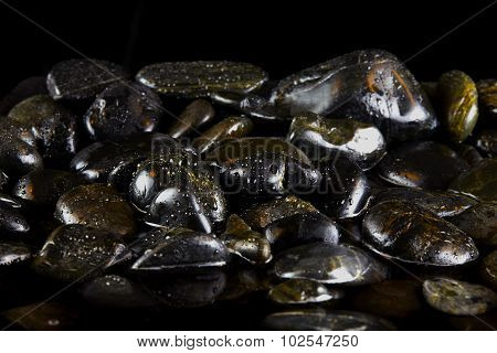 Wet Black Stones In Water With Evening Light