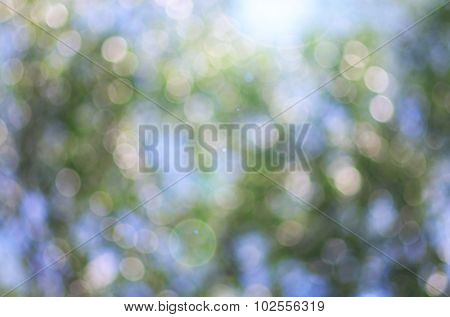 Bokeh background. Element of design.