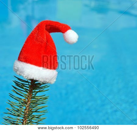 Santa Claus Hat On A Branch Of Spruce