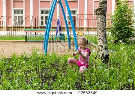 Little Girl With Pigtails Playing With Dandelions