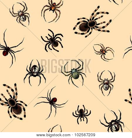 Seamless pattern with dangerous realistic spiders (raster version)