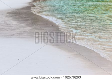 Foreshore Detail