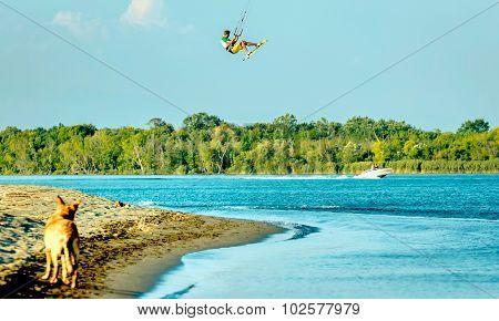 Water Fun And Kitesurfing In Ada Bojana, Montenegro, With A Dog Running Around