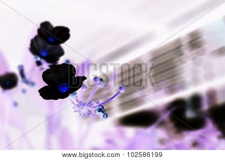 Abstract Dark Blue Flower