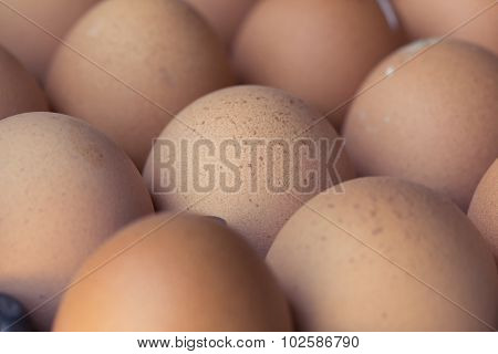 Fresh Organic Eggs From Chicken Farm Agriculture For Sale At The Market