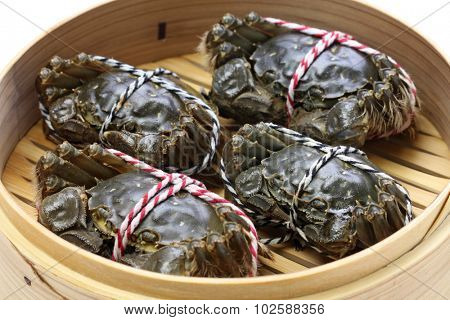 raw chinese mitten crab, shanghai hairy crab in bamboo steamer