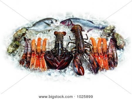Lobsters And Fish