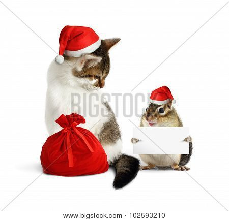 Funny Xmas Pet, Chipmunk With Blank  And Cat With Santa Hat And Sack