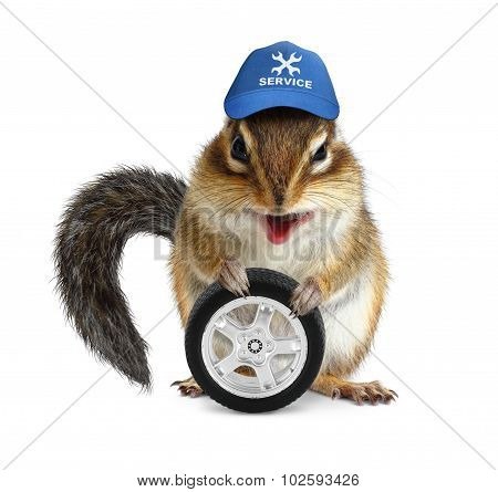 Funny Craftsman Chipmunk With Auto Tire