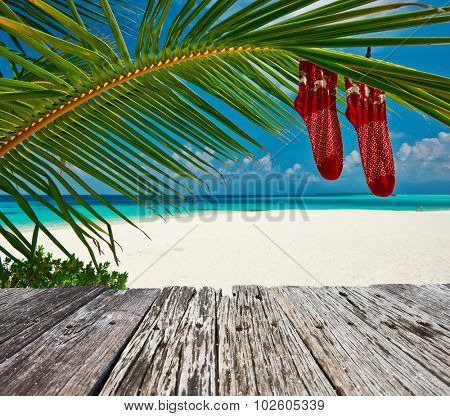 Beautiful beach with palm tree at christmas