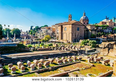 Rome, Italy - October 30: Roman Ruins, Forum, In Rome, Italy On October 30, 2014.