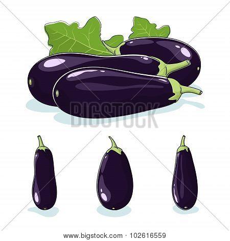 Vegetable Eggplant, Edible Fruit