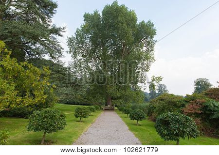 Estate grounds Tyntesfield House near Wraxall North Somerset England UK a Victorian mansion