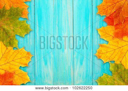 Autumn Frame On A Blue Board