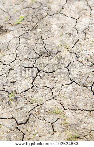 Brown Dry Sand In Sahara Desert Morocco Africa