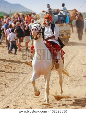 An Unidentified Rider On A White Horse Attends At The Pushkar Fair