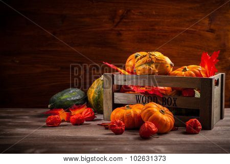 Traditional pumpkins for Thanksgiving and Halloween with copy space