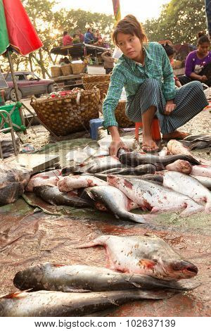 MANDALAY,MYANMAR,JANUARY 19, 2015: A woman is selling fresh fishes on the ground in a dirty and poor street market in Mandalay, Myanmar (Burma).